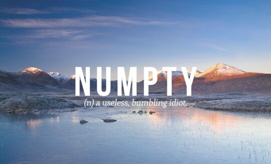 "Numpty--Gaelic for ""useless, bumbling idiot"":"