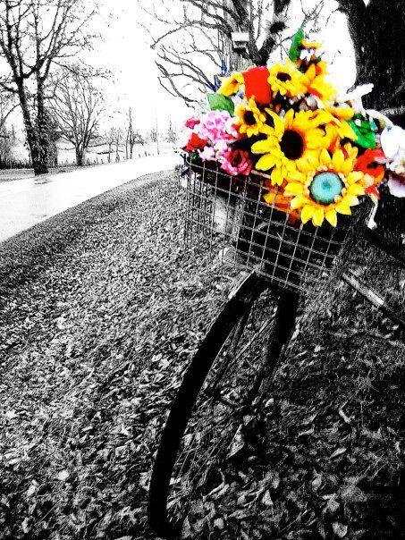 i used photoshop to make the image black & white minus the flowers!