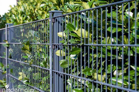 Gartenzaun Metall Grun. doppelstabzaun aus grün verzinktem ...