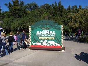"""Animal """"House"""" - Round 1.  What's your favorite AK attraction!"""