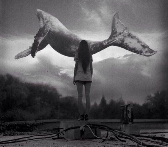 Фотографии Дарьи Алдониной – 34 альбома