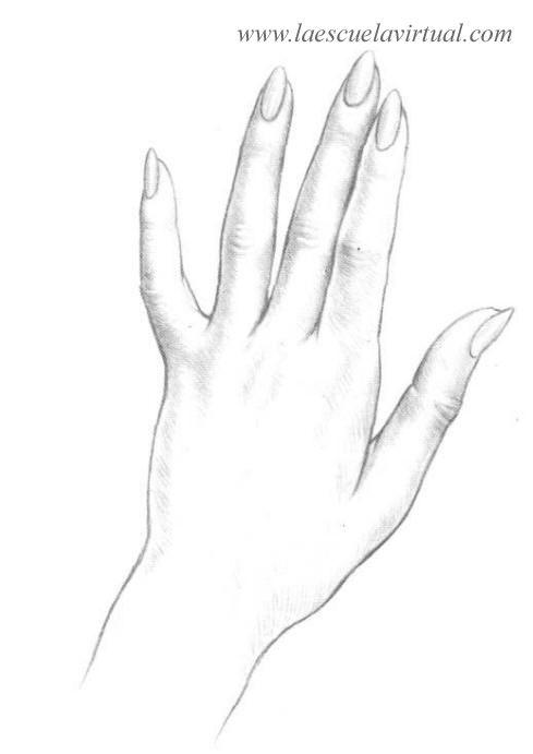 Como Dibujar Las Manos Pasrte 2 Curso Gratis Cursillo Online