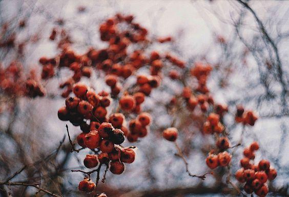 by nadya ka, via Flickr