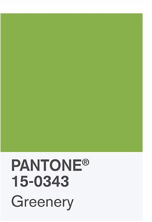 the spring 2017 Color Palette: PANTONE 15-0343 Greenery Bringing forth a refreshing take, Greenery is a tangy yellow-green that speaks to our need to explore, experiment and reinvent. Illustrative of flourishing foliage, the fertile attributes of Greenery signals one to take a deep breath, oxygenate and reinvigorate.: