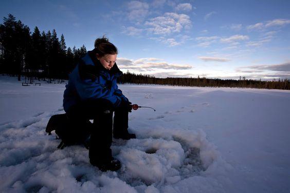 Finnische Wildnis - Für die Samí war er früher Alltagsgefährt, für Urlauber ist die Fahrt auf einem Rentierschlitten durch das verschneite Finnland etwas Besonderes. Auch das sollte man ausprobiert haben: Eisangeln, ein finnischer Nationalsport. Hier geht's zum Reisebericht: http://www.nachrichten.at/reisen/Finnische-Wildnis;art119,1268511 (Bild: Krämer)