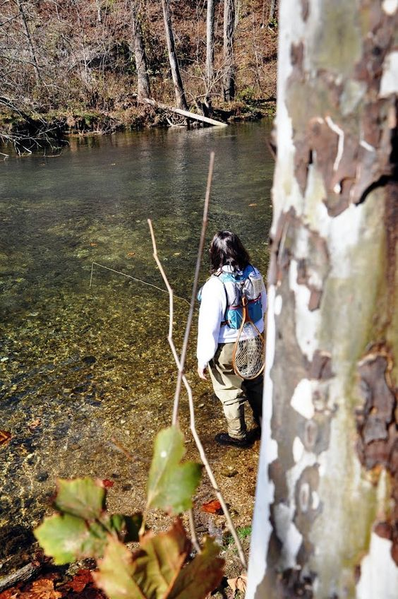 Fly fishing at bennett springs missouri branson the for Trout fishing in missouri