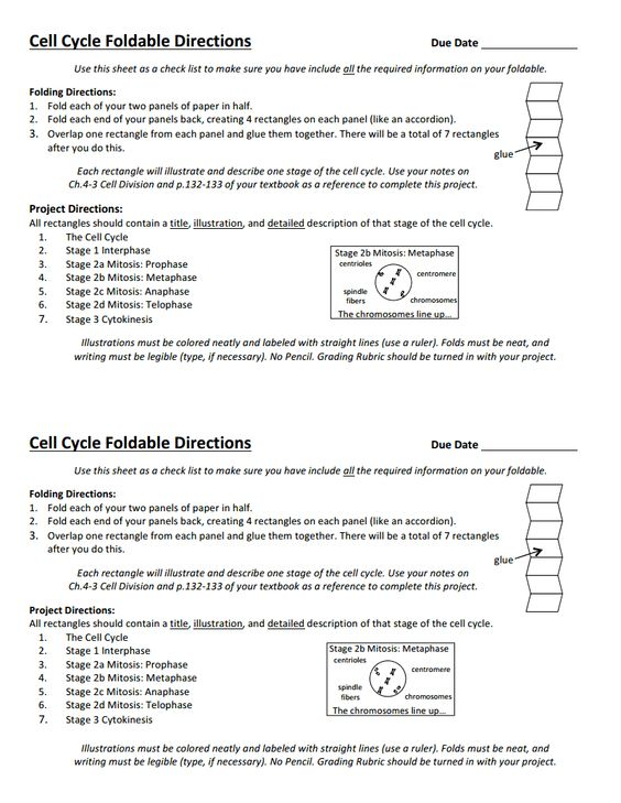 College board essay rubric ap biology