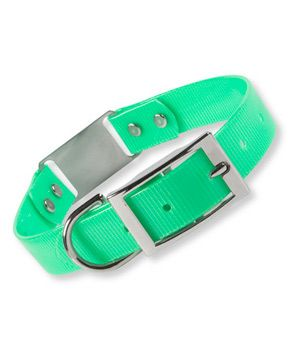 Safety Dog Collar With Personalization Plate