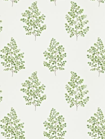 Angel Ferns (211995), a feature wallpaper from Sanderson, featured in the Maycott collection.