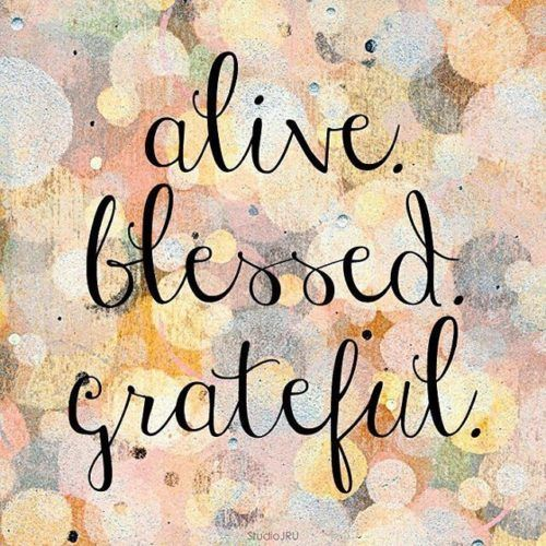 23 I M Blessed Quotes Grateful Quotes Blessed Quotes Gratitude Quotes