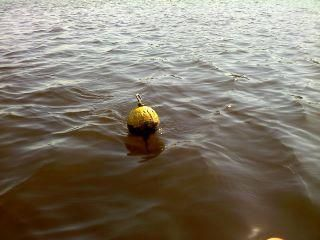 Crab buoys in the river