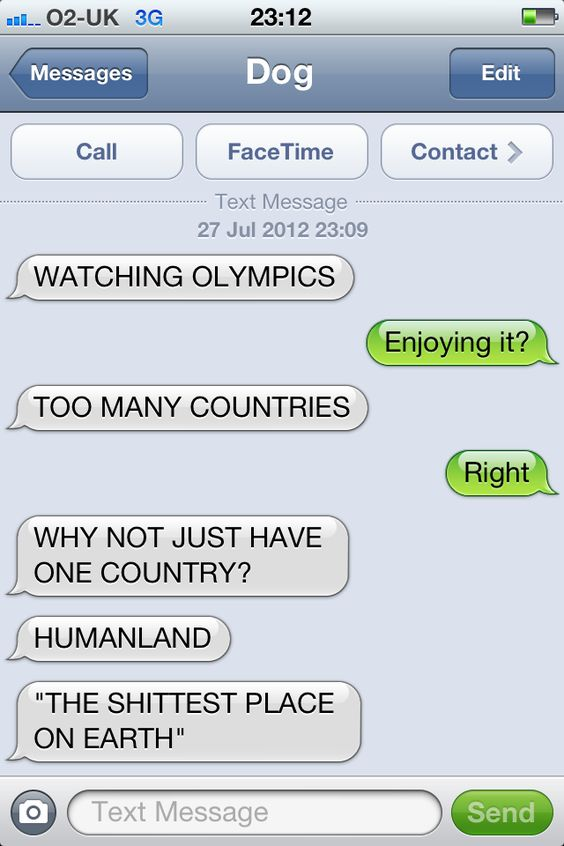 That about sums it up.: Funny Texts,  Internet Site,  Website, Watching Olympics, Web Site, Funny Stuff, Autocorrect Funnytexts, Funnytexts Textfromdog, Funny Dog Texts