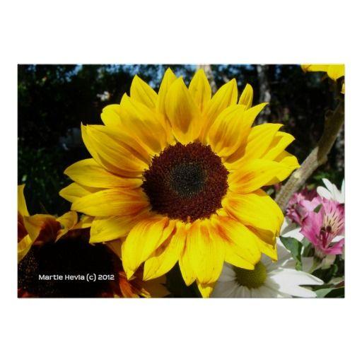 Sunflower & Friends Bouquet | Photography by Martie Hevia http://www.zazzle.com/mhevia*/