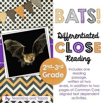 Differentiated Close Reading - Bats FREEBIE