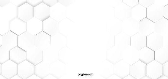 Hexagonal White Background In 2021 White Background Images White Background Wallpaper White Background Plain white background images hd