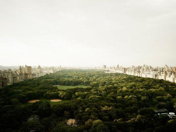 Central Park (New York, 2011)