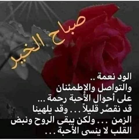 Pin By زهرة البنفسج On صور Romantic Love Quotes Romantic Love Love Quotes