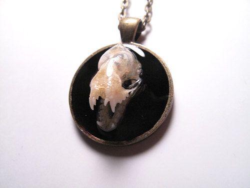 Real Bat Skull Necklace Taxidermy Jewelry OOAK Skull Bone Jewelry