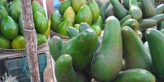 #Früchte #Kuba © Luchanta Draskowitsch