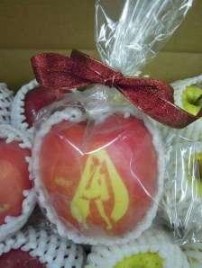 Vocaloid Hatsune Miku Apple