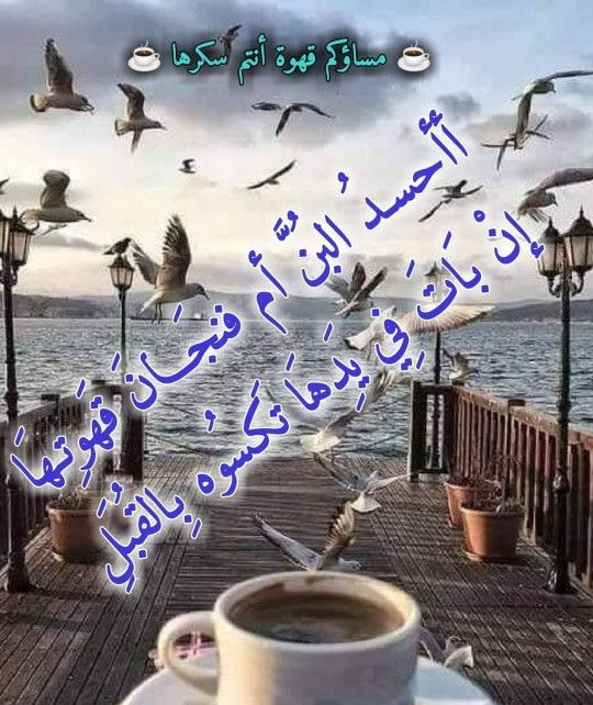 Pin By فلسطينية ولي الفخر On لاجمل عيون بتقرأ مساء الخير