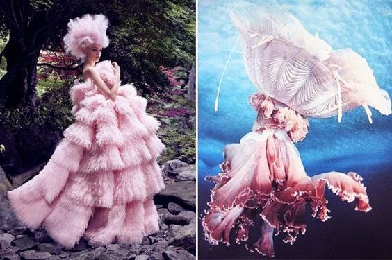 Where I See Fashion: Match #1 gown and jellyfish
