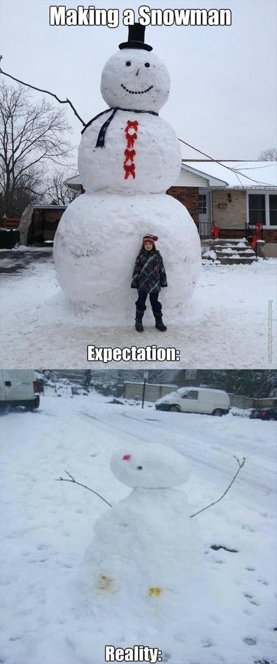 33 Instances Of Expectations Vs Reality - Gallery: