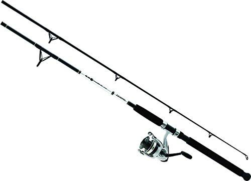 Daiwa D Wave Saltwater Spinning Combo 2 Piece Saltwater Fishing Accessories Fishing Reels