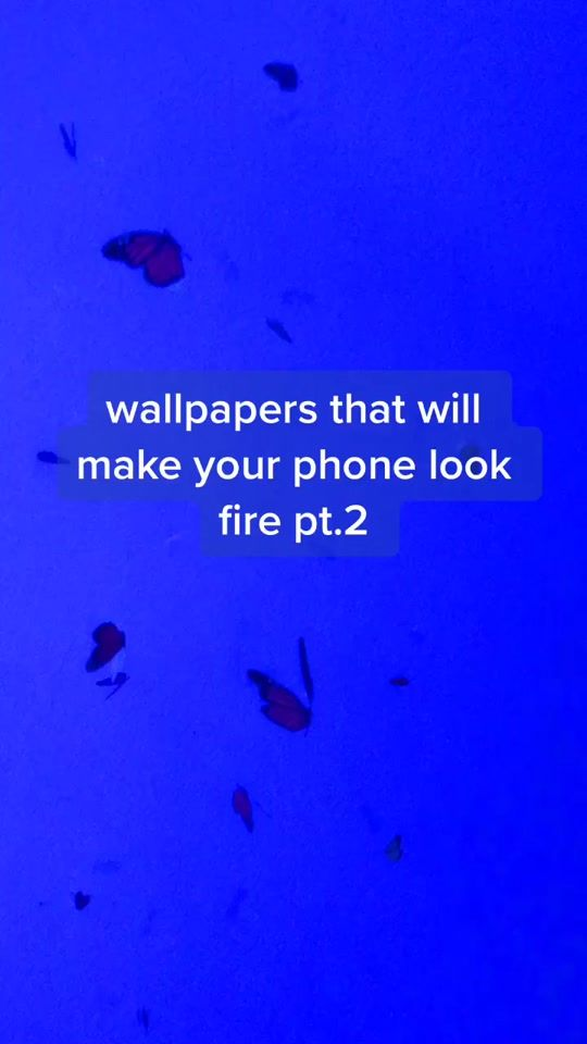 Wallpapers That Make Your Phone Look Fyp Foryou Wallapapers Aesthetic Aestheticwallpapers Viral Foryoupage