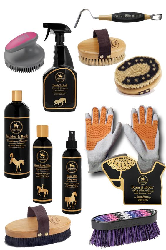 Grooming essentials for a clean horse