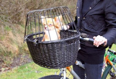 Dieser Fahrradkorb aus dunkler Weide zum Anhängen an die Lenkstange ist mit einem Gitter ausgestattet, welches ein Herausspringen des Tieres verhindert. Zusätzlich liegt in dem Korb ein schönes Kissen in Veloursleder-Optik.An den Seiten befinden sich Auslässe zum Transportieren. Der Korb kann als Hundefahrradkorb oder Katzenfahrradkorb verwendet werden. https://www.plus.de/p-1601135000?RefID=SOC_pn