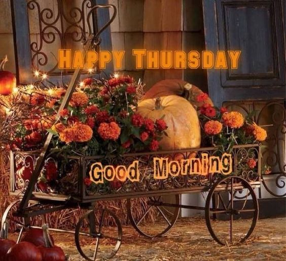 Happy Thursday Good Morning quotes quote days of the week thursday thursday quotes happy thursday happy thursday quotes