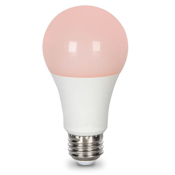 The NASA Sleep Promoting 9-watt LED Light Bulb encourages production of melatonin, Hammacher Schlemmer, $39.95