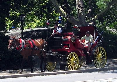 "A carriage ride around Central Park?  Yes please!  (As long as I can see where ""Home Alone 2"" and ""Ghostbusters"" were filmed...)"