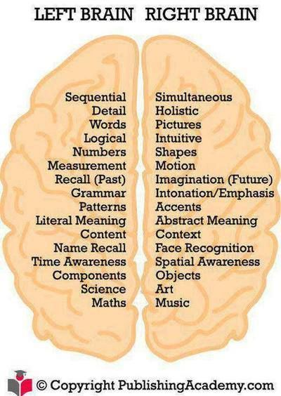 the brain left vs right essay It's absolutely true that some brain functions occur in one or the other side of the brain, language tends to be on the left, attention more on the right but the brain isn't as clear-cut as the.