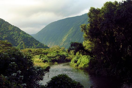 waipio valley - hawaii
