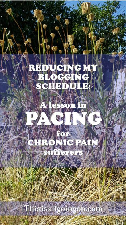Since launching my blog I've worked hard to maintain a schedule. My chronic illness has flared up, telling me to learn to start pacing myself for health.