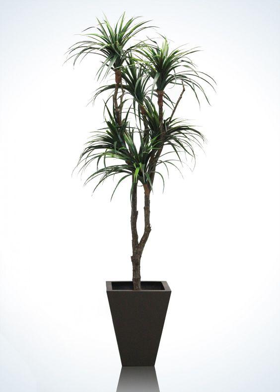 Árbol artificial, Yucca artificial