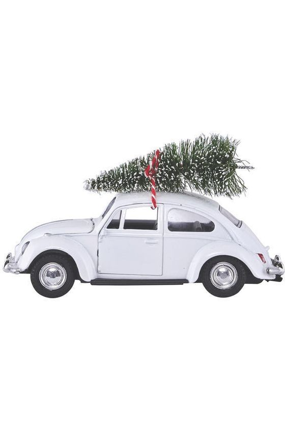 Christmas Car Auto Tannenbaum White House Doctor