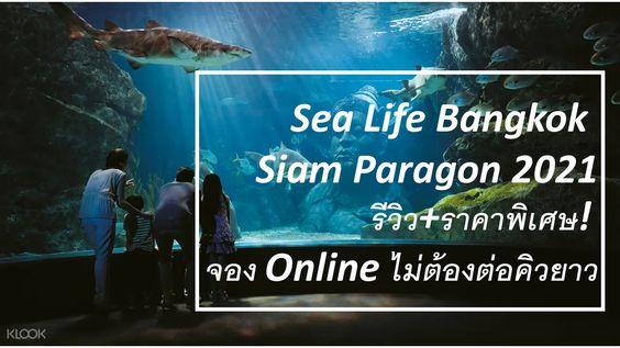 Sea life Bangkok พาราก้อน ราคาพิเศษ ไม่ต้องต่อคิวยาว