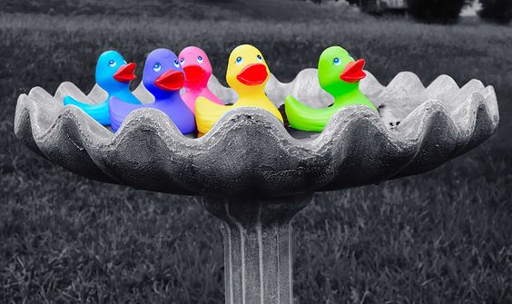 Splish Splash, I Was Takin' A Bath!