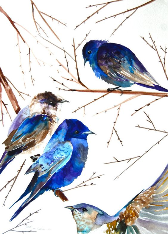 Original watercolor painting of four purple martins perched on branches. Lots of purples and blues mixed with a few browns makes this a beautiful and