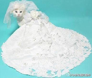 Hier haben wir schöne Hochzeitsmode Online bei PERSUN! Was warten Sie noch? Komm bitte zu mir! http://www.persunkleid.de/brautkleider-c85/ …