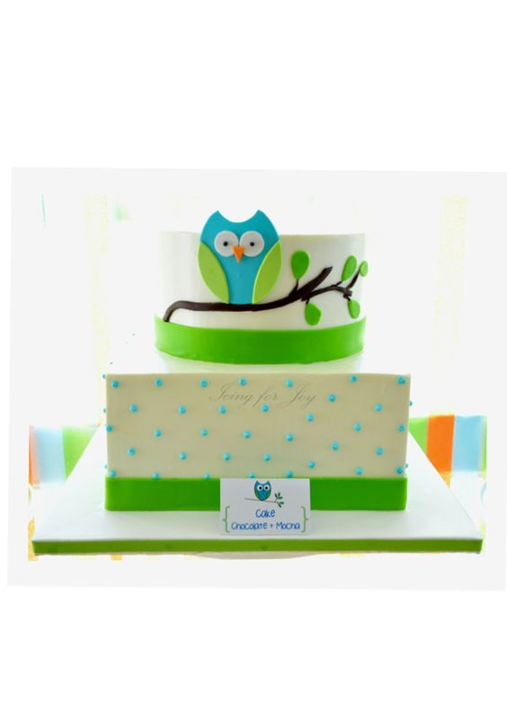 Owl cake for baby shower from icingforjoy