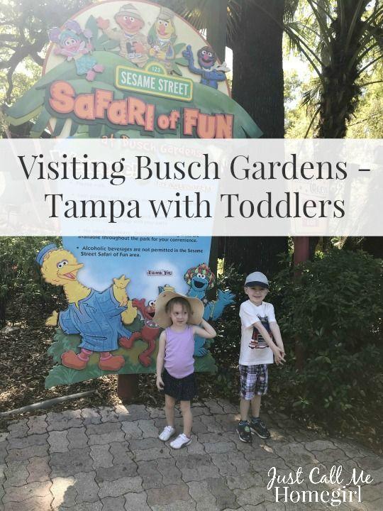 95dd272e87e945090782de20c0308e65 - Busch Gardens Bring A Friend 2017