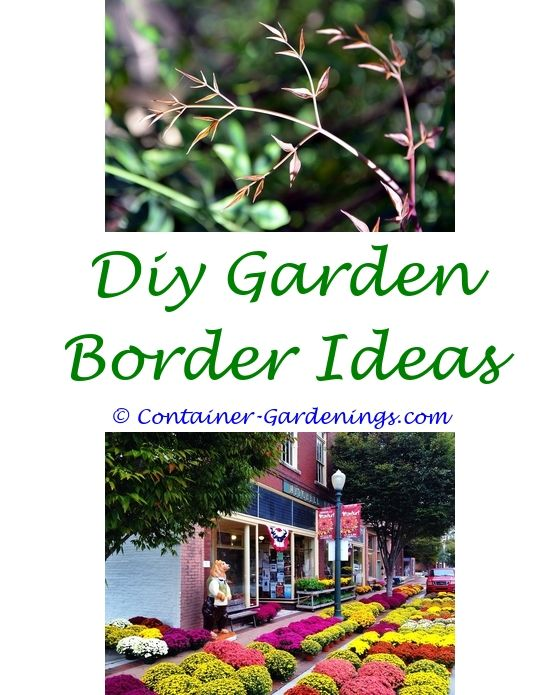 Garden Filler Ideas Home Kitchen Garden Tips Ideas For Back