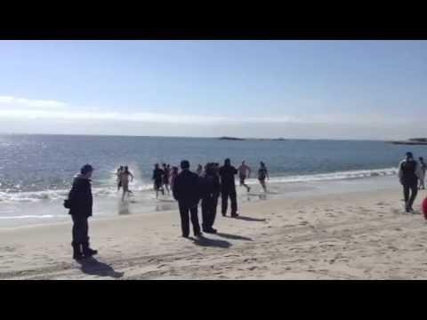 Penguin Plunge 2013 Ocean Beach, New London, CT