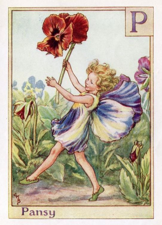 Pansy Alphabet Letter P Flower Fairy Vintage Print, c.1940 Cicely Mary Barker Book Plate Illustration: