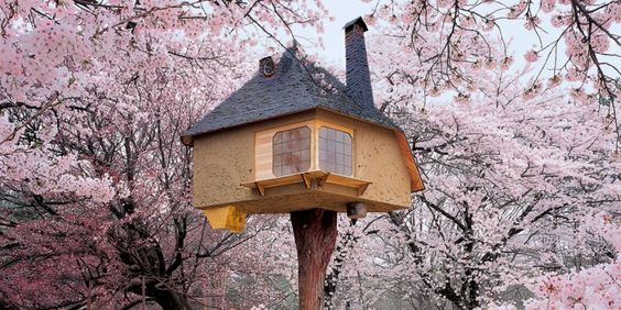 Neu bei TASCHEN: Tree Houses. Fairy Tale Castles in the Air