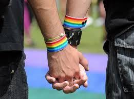 Ministra llama al respeto y reconocimiento de la diversidad sexual
